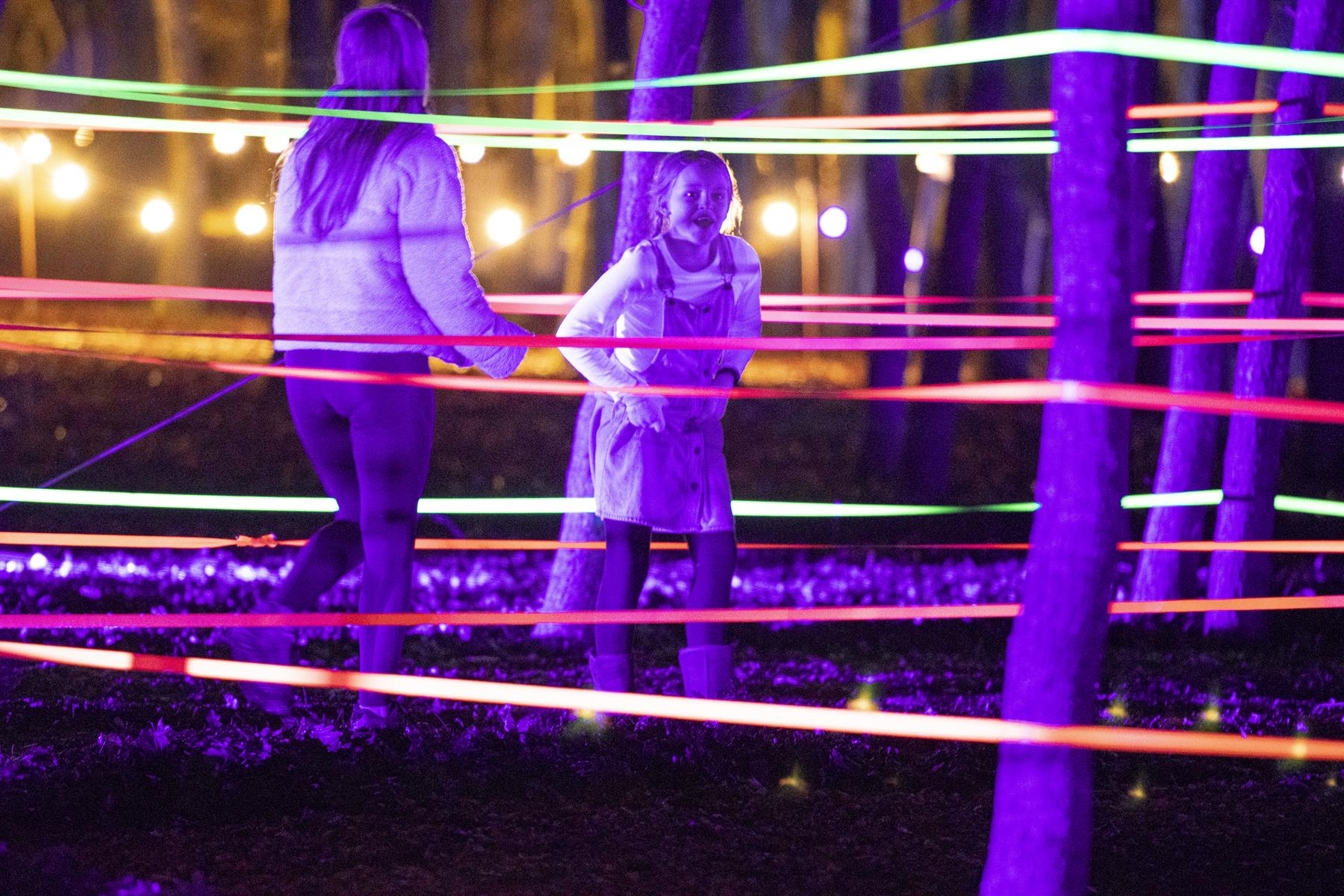 Image of maze installation at Illuminated Arboretum