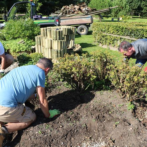 Corporate Friends volunteering at the Arboretum