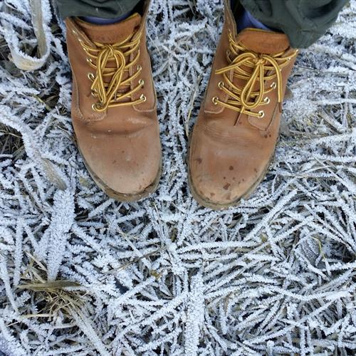 Walking Boots on Frosty Ground